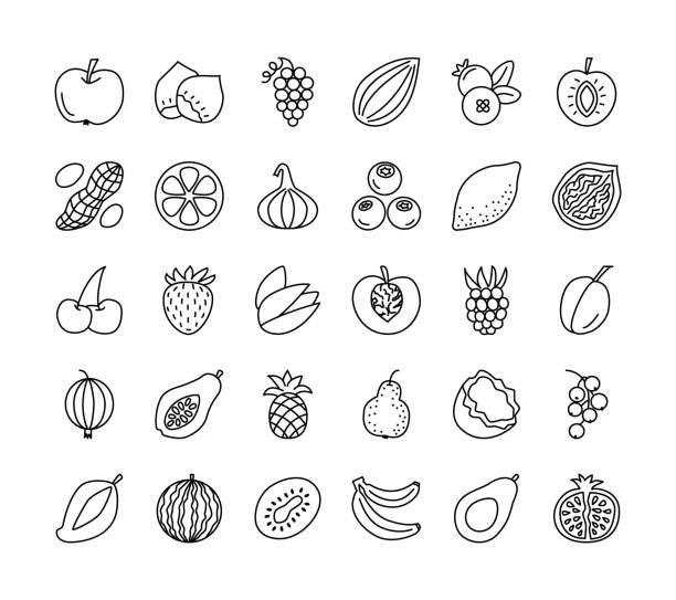 Vector line icon collection. Fruits, berries and nuts. Healthy vegetarian food. Apple, cherry, pineapple, grape, hazelnut, peanut; strawberry, raspberry. Vector line icon set. Fruits, berries and nuts. Healthy vegetarian food. Apple, cherry, orange, lemon, walnut, hazelnut, avocado, pineapple, strawberry, raspberry, blueberry. Isolated on white background. banana borders stock illustrations