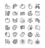 Vector line icon set. Fruits, berries and nuts. Healthy vegetarian food. Apple, cherry, orange, lemon, walnut, hazelnut, avocado, pineapple, strawberry, raspberry, blueberry. Isolated on white background.