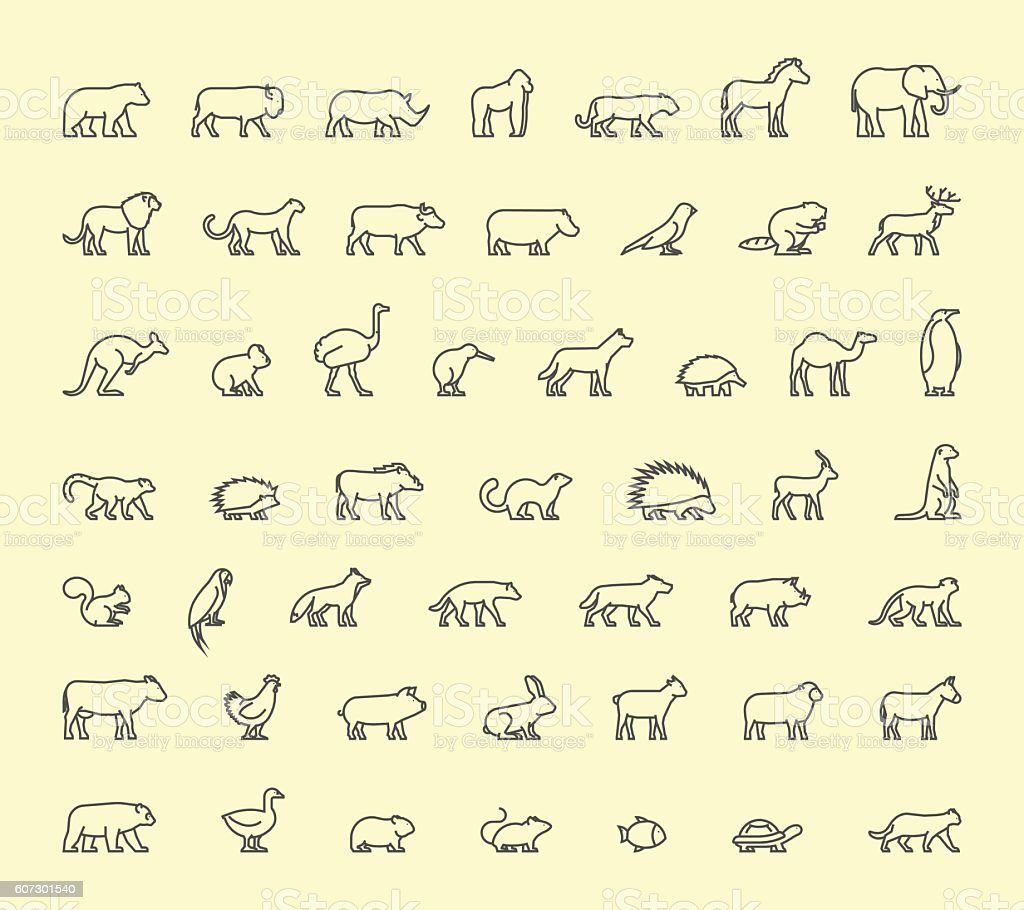 Vector line icon wild animals vector art illustration