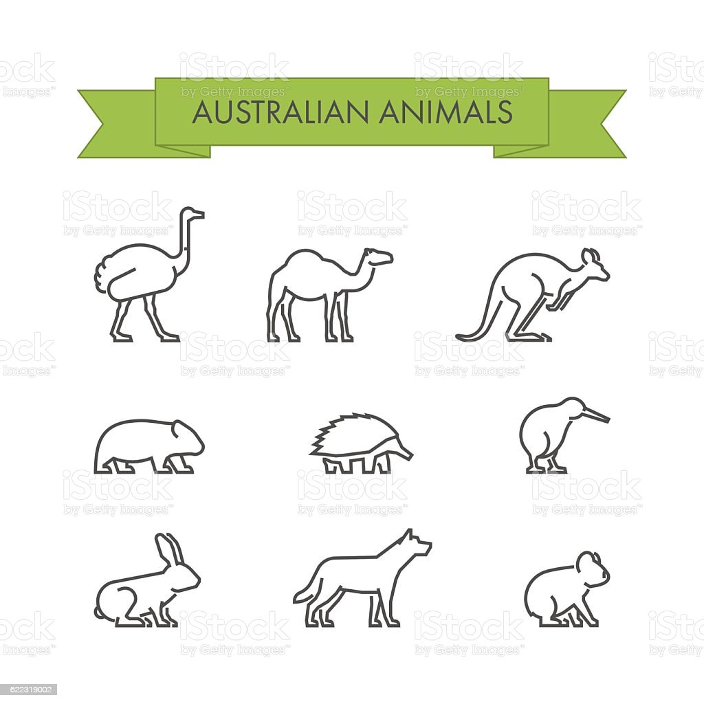Vector line set of australian animals vector art illustration