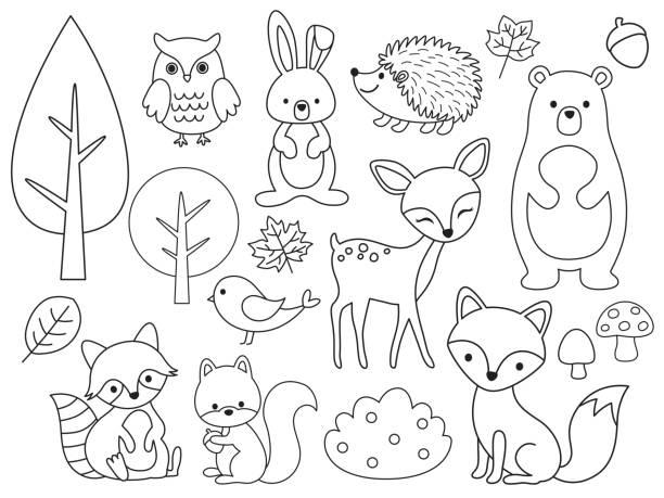 Vector line set of Woodland Animals Outline for Coloring Vector line set of Woodland Animals. Animal outline for coloring including bear, deer, fox, rabbit, raccoon, squirrel, hedgehog, owl, bird. animal stock illustrations