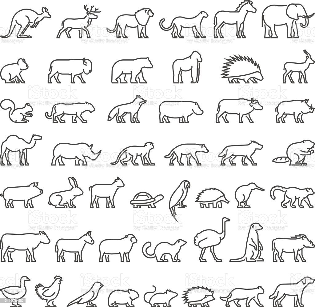 Line Drawing Of Domestic Animals : Vector line silhouettes of domestic farm and wild animals