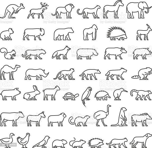 Vector line silhouettes of domestic farm and wild animals vector id541978450?b=1&k=6&m=541978450&s=612x612&h=wcxqz7y081nhcbeek6o3vyyxceucgjq30a6h vgspvu=