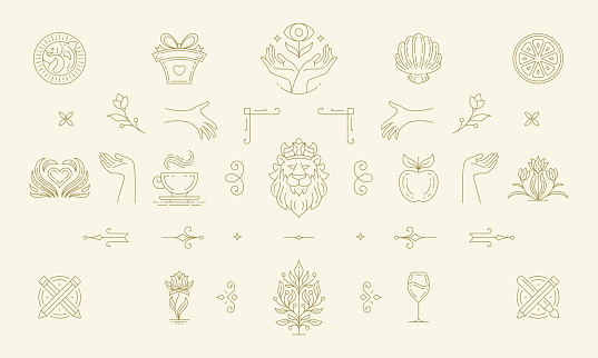 Vector line women decoration design elements set - flowers and gesture hands illustrations simple minimal linear style