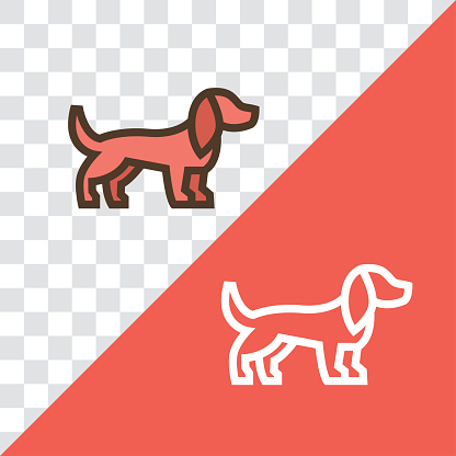 Vector linear icon with dachshund dog