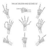 Vector linear skeleton hands gestures