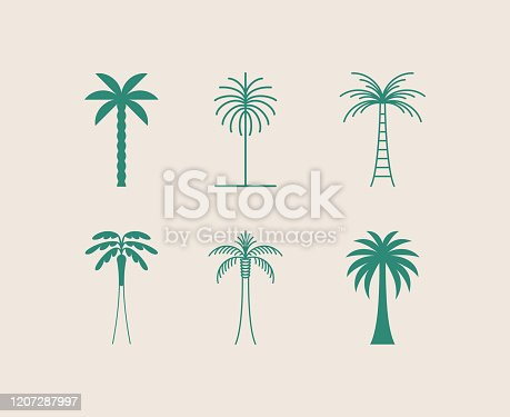 istock Vector logo design template with palm tree - abstract summer and vacation badge and emblem for holiday rentals, travel services, tropical spa and beauty studios 1207287997