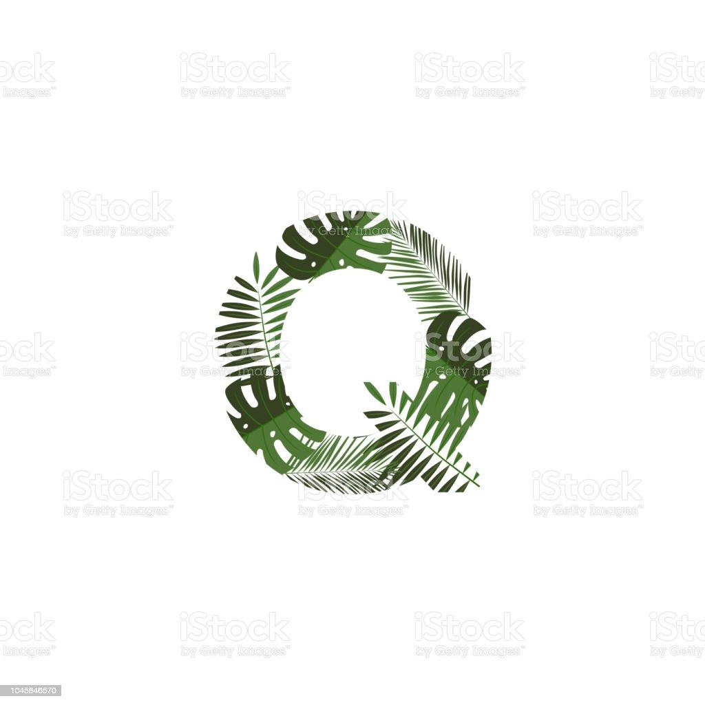 Vector Logo Letter Q Tropical Leaves Stock Illustration Download Image Now Istock Green leaf on white sand during daytime. https www istockphoto com vector vector logo letter q tropical leaves gm1045846570 279858470
