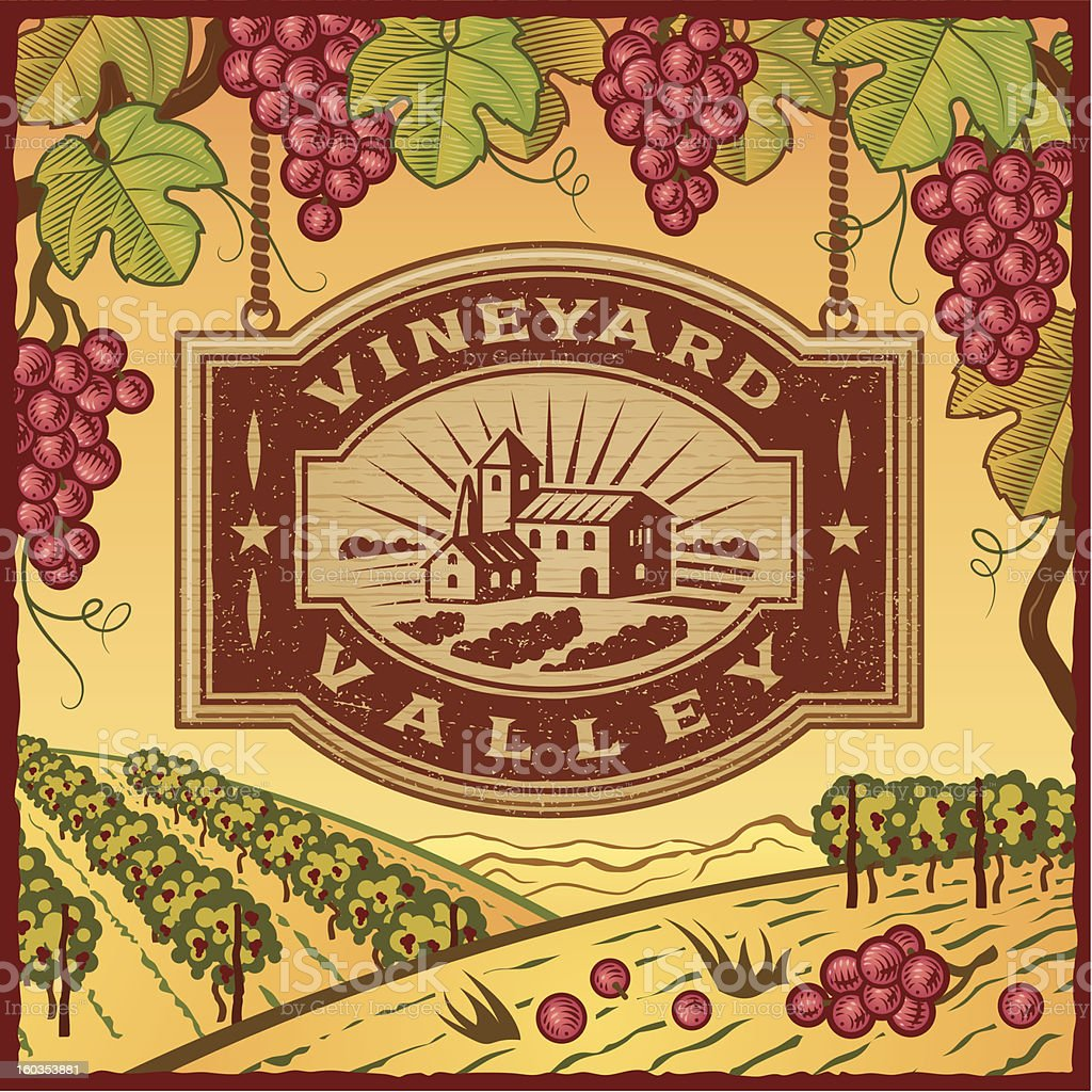 Vector logo template with Vineyard Valley text vector art illustration