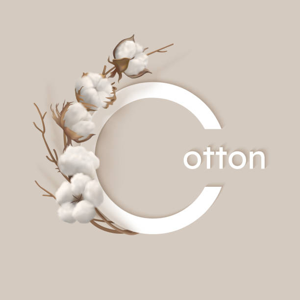 Vector logo with cotton branch Round letters Cotton with cotton branch on a light background. White cotton buds and brown branch. Vector illustration cotton stock illustrations
