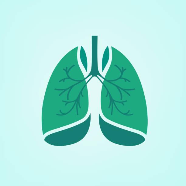 stockillustraties, clipart, cartoons en iconen met vector lungs icon - longen