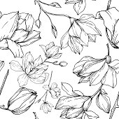 Vector Magnolia floral botanical flowers. Wild spring leaf wildflower isolated. Black and white engraved ink art. Seamless background pattern. Fabric wallpaper print texture.
