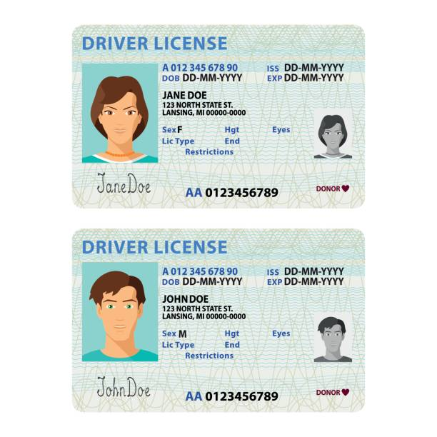 Vector man and woman driver license plastic card template vector art illustration