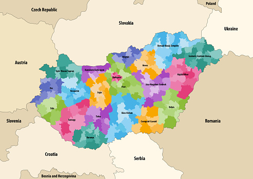 Vector map of districts of Hungary colored by counties with neighbouring countries and territories