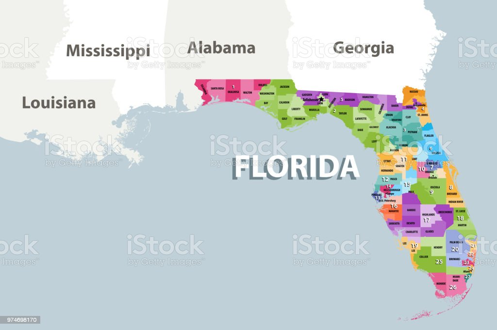 Vector Map Of Florida Congressional Districts With Nearest States ...