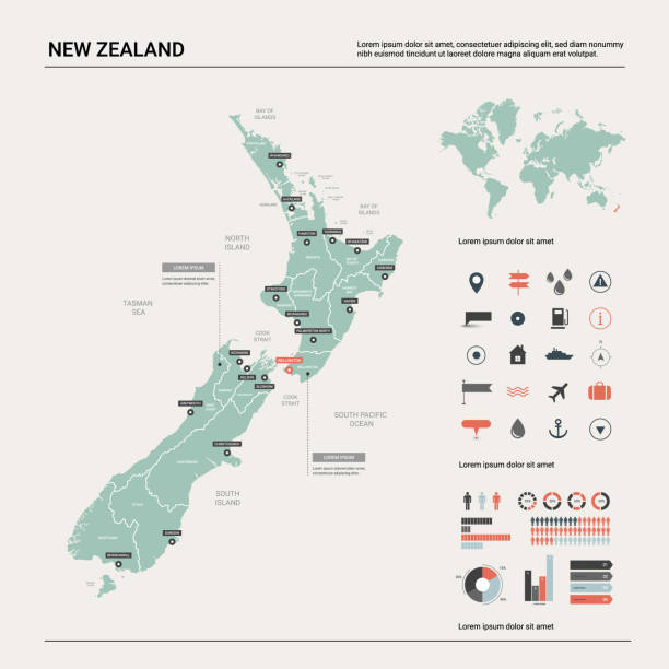 ilustrações de stock, clip art, desenhos animados e ícones de vector map of  new zealand. country map with division, cities and capital wellington. political map,  world map, infographic elements. - wellington