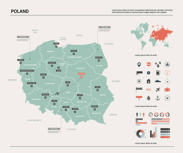 vector map of poland. country map with division, cities and capital warsaw. political map,  world map, infographic elements. - polska stock illustrations