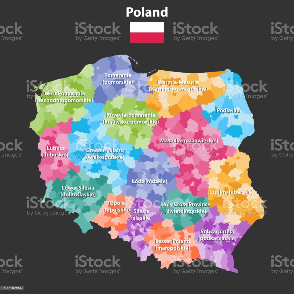 vector map of Poland provinces(known as voivodeships) with administrative divisions. Polish names gives in parentheses, where they differ from the English ones.