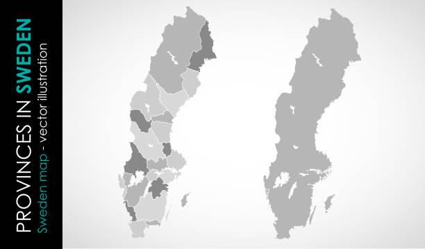 bildbanksillustrationer, clip art samt tecknat material och ikoner med vektorkarta över sverige provinsengrå färg - sweden map
