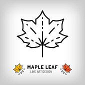 Vector maple leaf icon Autumn leaves Canada symbol. Line design