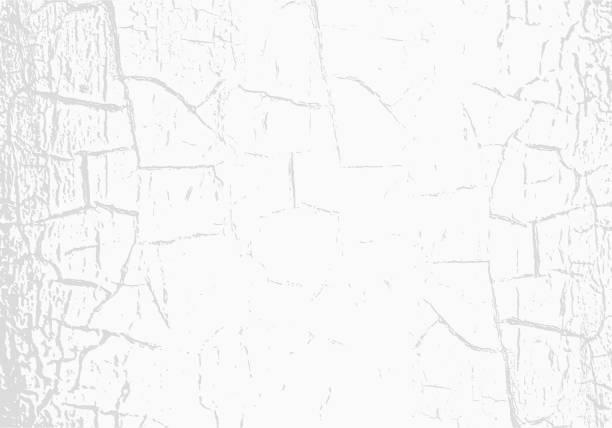 ilustrações, clipart, desenhos animados e ícones de textura de mármore de vetor com tinta branca rachada. arranhões. sutil fundo cinzento claro. pano de fundo abstrato grunge - texturas de riscos