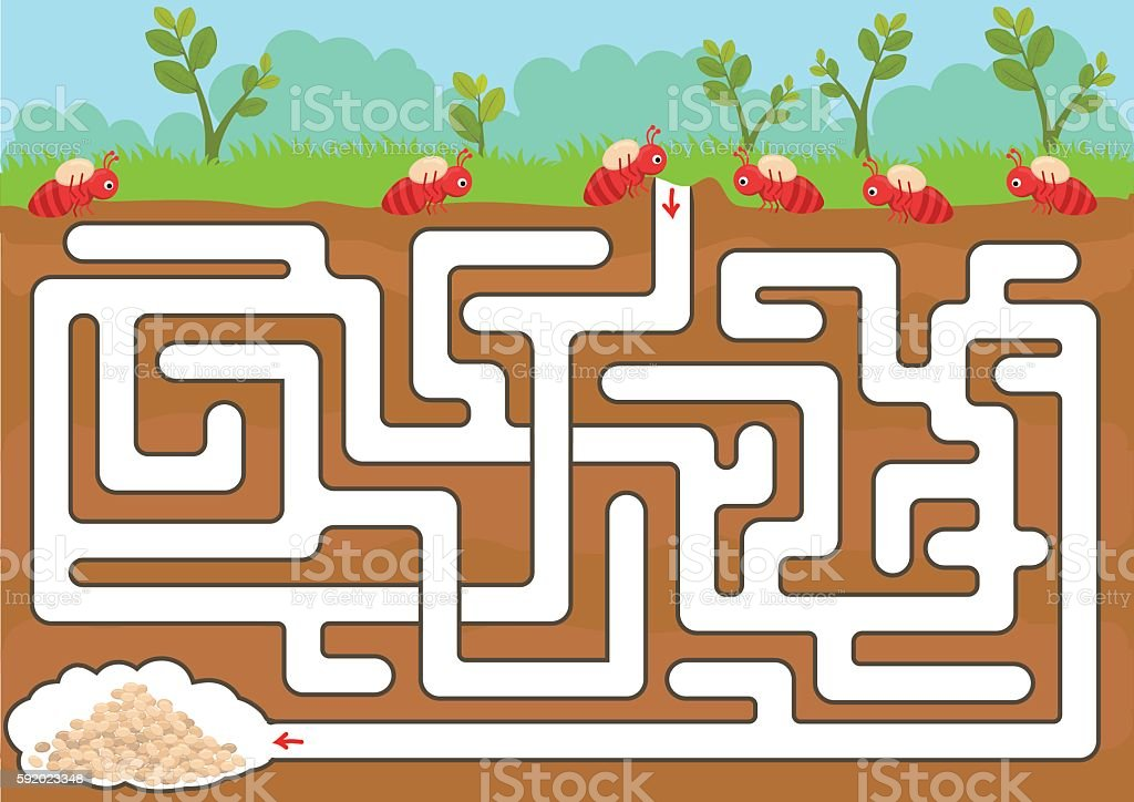 Vector maze game with find ant room in underground vector art illustration
