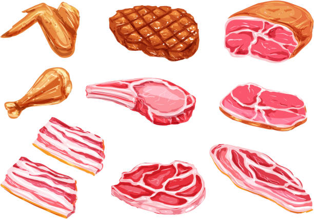 Vector meat products watercolor paint icons vector art illustration