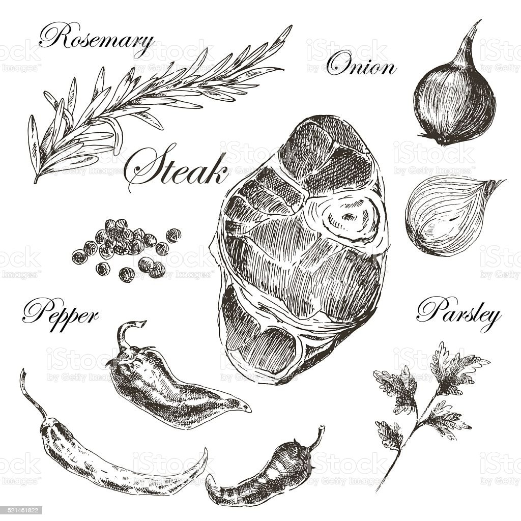 vector meat steak sketch drawing designer template. food hand-drawn vector art illustration
