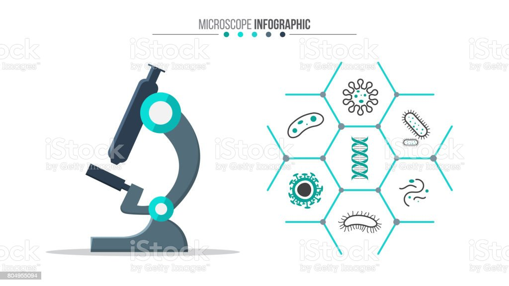 Vector medical and healthcare infographic. vector art illustration