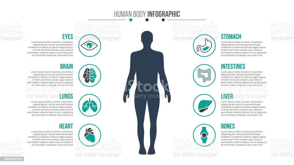 Vector medical and healthcare infographic. royalty-free vector medical and healthcare infographic stock illustration - download image now