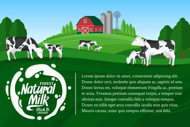Vektor-Milch Illustrationen – Vektorgrafik