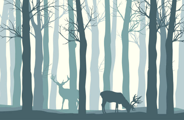 Vector misty winter landscape with silhouettes of trees and deer Vector misty winter landscape with silhouettes of trees and deer woodland stock illustrations