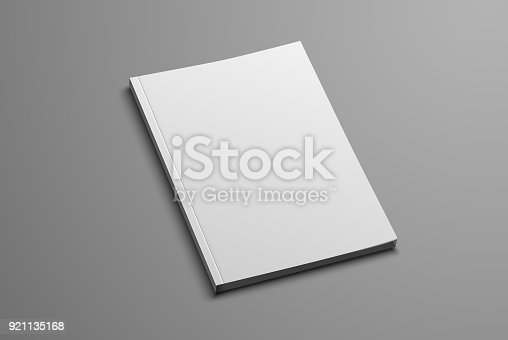 Vector mockup for the presentation of the brochure. White realistic blank of A4 and A5 catalog on a gray background
