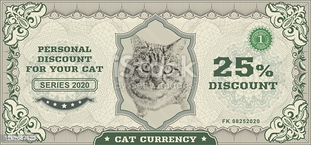 Vector money banknotes. Fake money illustration with realistic vector tabby cat, floral border. Classical vintage style. Back sides of money bills