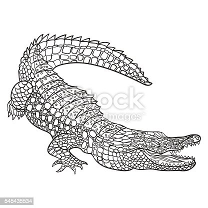 Vector monochrome hand drawn illustration of crocodile. Coloring page with high details isolated on white background. Boho style. Design for T-shirt, greeting card or poster.