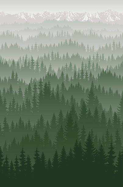 vector mountains forest with fog background texture seamless pattern - mountains in mist stock illustrations