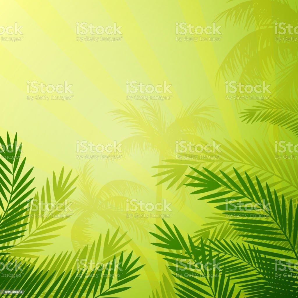 Vector Natural Background vector art illustration