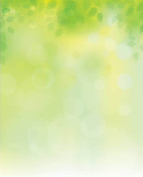 vector  nature background. - leaves backgrounds stock illustrations
