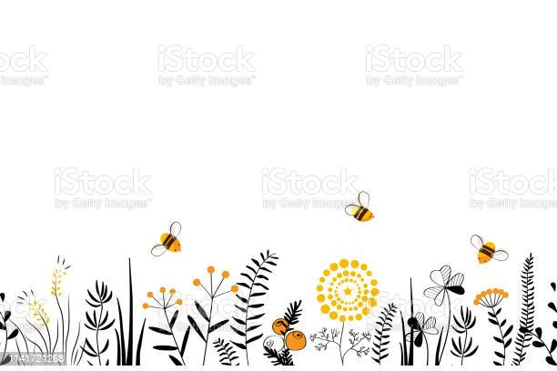Vector nature seamless background with hand drawn wild herbs flowers vector id1141721268?b=1&k=6&m=1141721268&s=612x612&h=br3ypm0wv8ajcwitlm3mp3yod6s4swe5vtey2kyvfam=
