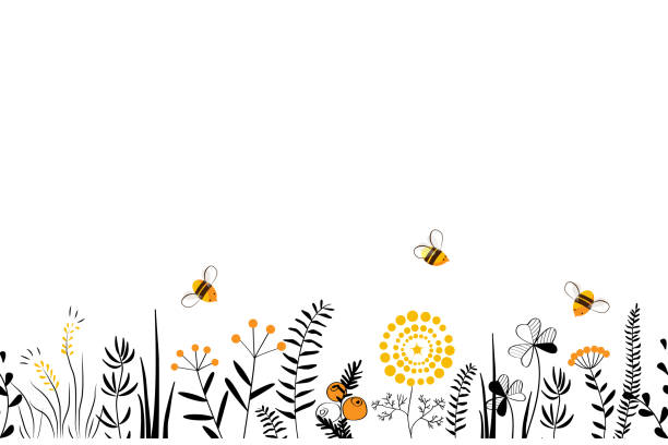 Vector nature seamless background with hand drawn wild herbs, flowers and leaves on white. Doodle style floral illustration. Vector nature seamless background with hand drawn wild herbs, flowers and leaves on white. Doodle style cartoon floral illustration. springtime stock illustrations
