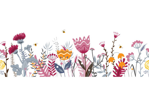 Vector nature seamless background with hand drawn wild herbs, flowers and leaves on white. Doodle style floral illustration. Vector nature seamless background with hand drawn wild herbs, flowers and leaves on white. Doodle style floral illustration. Floral border bee borders stock illustrations
