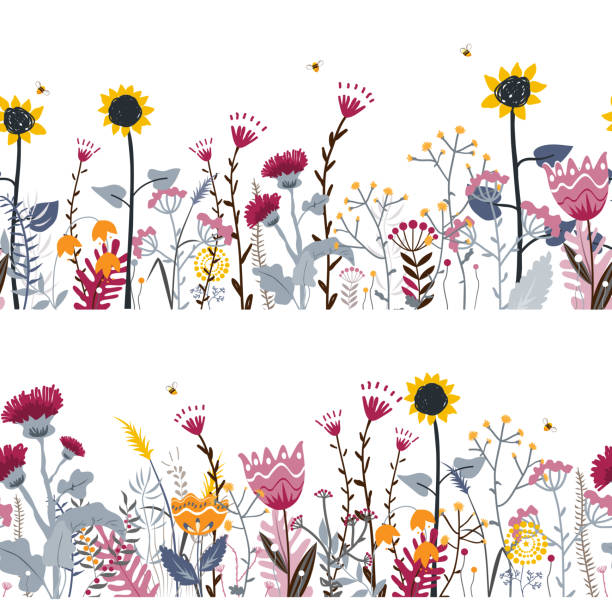 Vector nature seamless background with hand drawn wild herbs, flowers and leaves on white. Doodle style floral illustration Vector nature seamless background with hand drawn wild herbs, flowers and leaves on white. Doodle style floral illustration. bee borders stock illustrations