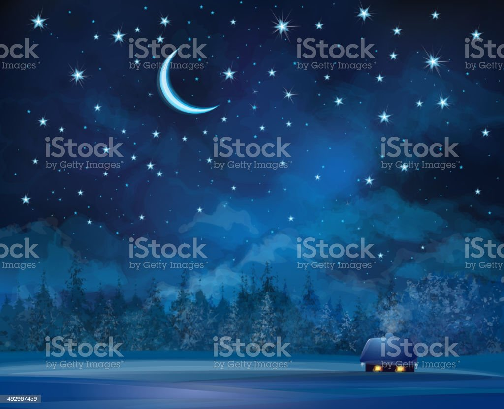 Vector night scene with house on starry sky background. vector art illustration