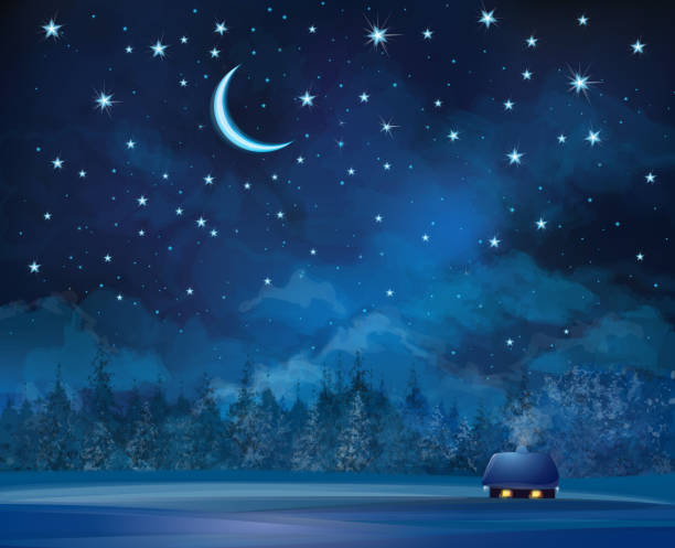 Vector night scene with house on starry sky background. Background is my creative handdrawing and you can use it for Christmas, card, season design and etc, made in vector, Adobe Illustrator 10 EPS file, transparency effects used in file. light through trees stock illustrations