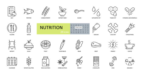 ikony żywienia wektorów. edytowalny obrys. składniki odżywcze w żywności, dieta, utrata masy ciała, równowagi. białko, węglowodany, błonnik, tłuszcz trans, witaminy, cukier, sód, wapń, cholesterol, gluten, laktoza - minerał stock illustrations