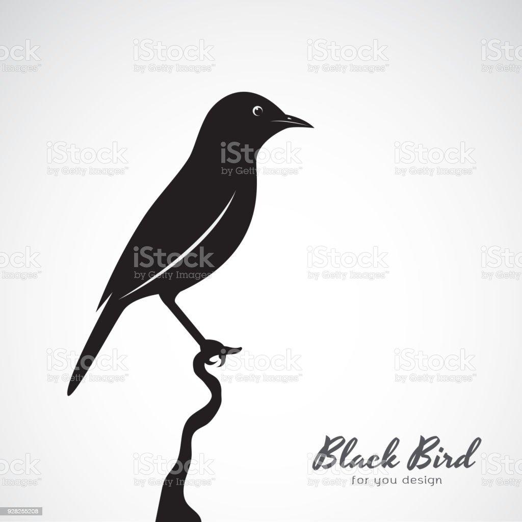 白い背景に黒い鳥のベクトル動物簡単に編集可能な階層化されたベクトルの