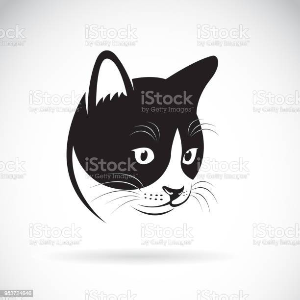 Vector of a cat head design on white background pet animal easy vector id953724646?b=1&k=6&m=953724646&s=612x612&h=j ifsmc76dyiwvo9o5dx7xt 9i4hlzfx4gsadtams7q=
