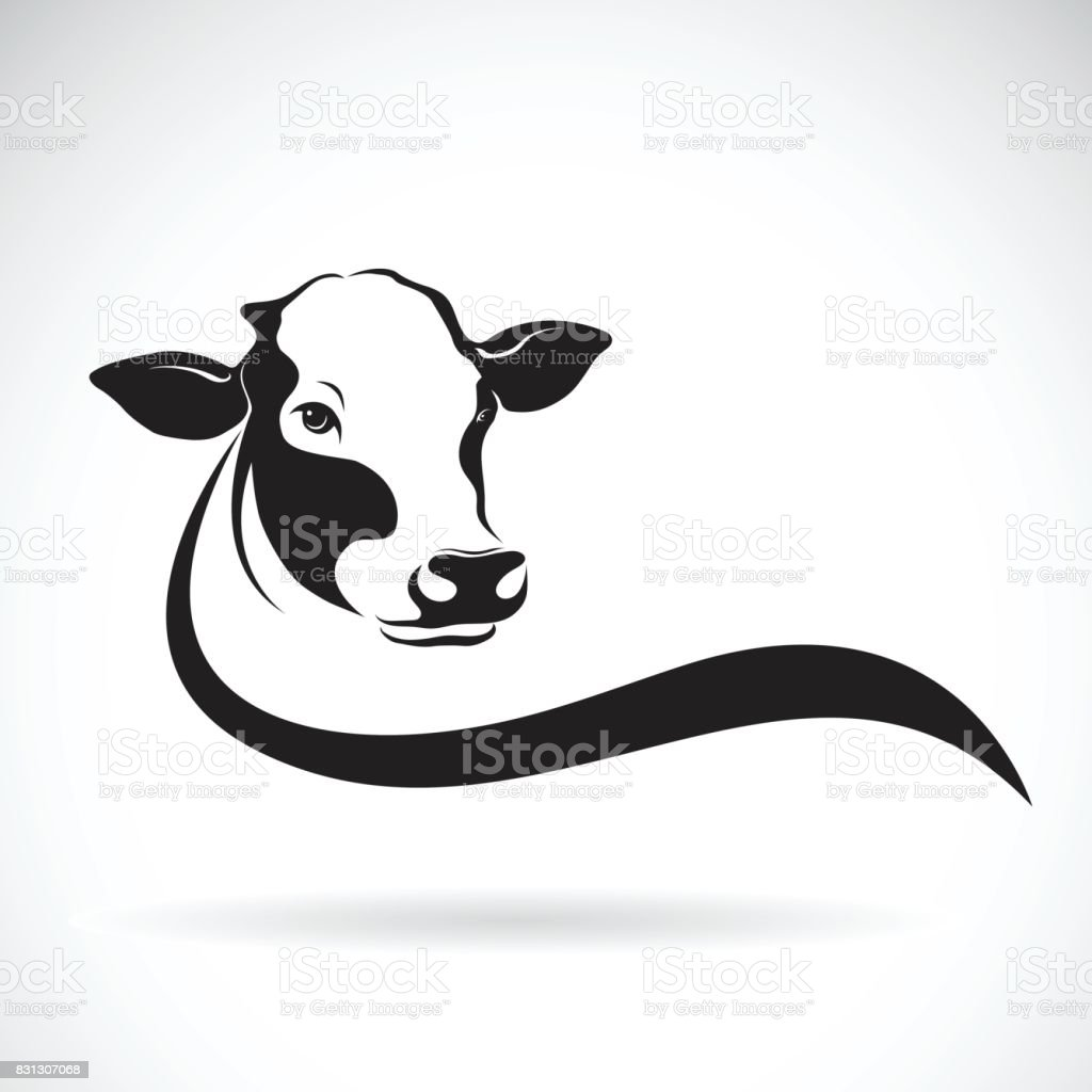 Vector of a cow head design on white background. Farm Animal. vector art illustration