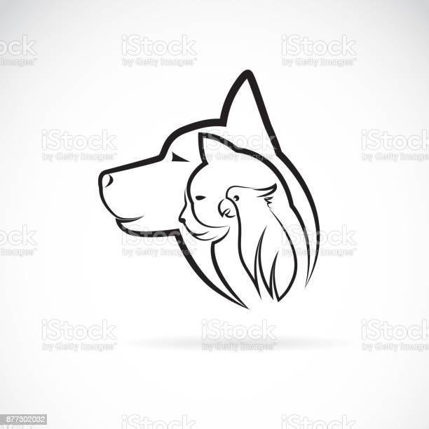Vector of a dog cat and bird on white background pet animal design vector id877302032?b=1&k=6&m=877302032&s=612x612&h=dcpgoer02rk50ujvypnb opaofysyuaugwpz1gupmue=