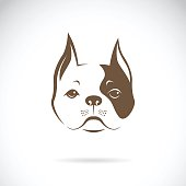 Vector of a dog face on a white background. Bulldog.